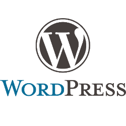 Wordpress live chat for business websites